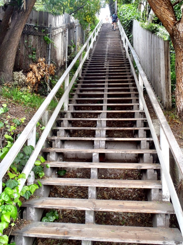 santa monica stairs via posh granola