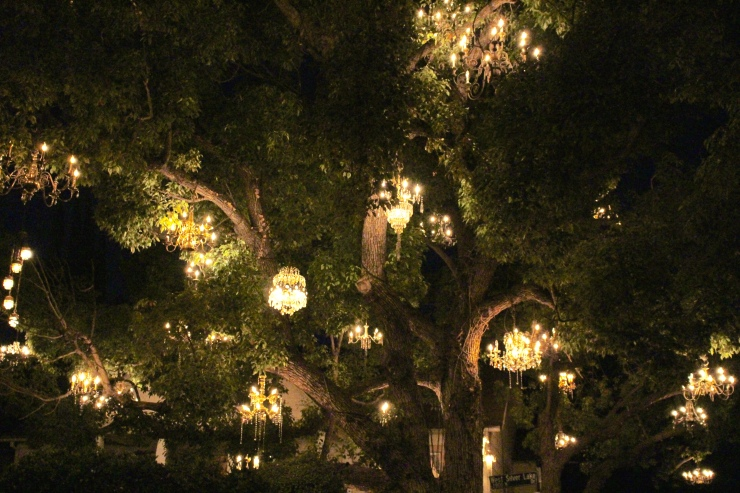 The Chandelier Tree in Silver Lake is delightfully charming ...